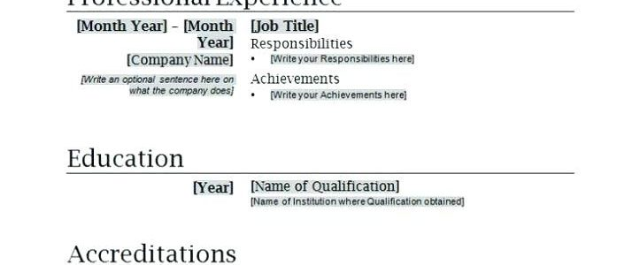 Sample Resume Templates Word Document
