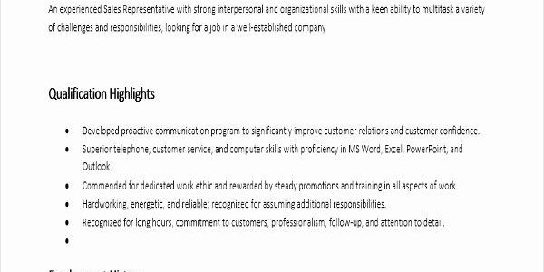 Resume Summary Examples Entry Level Sales