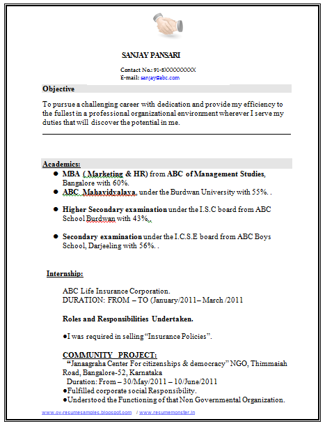 Resume Objective Examples For Freshers