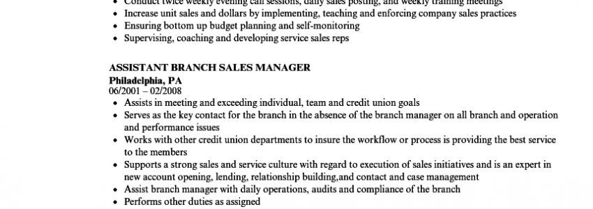 Retail Sales Manager Resume Bullet Points