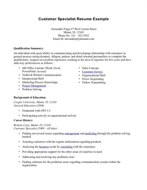 Professional Summary For Resume For Customer Service