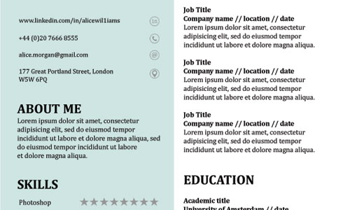 Free Resume Template Word Format