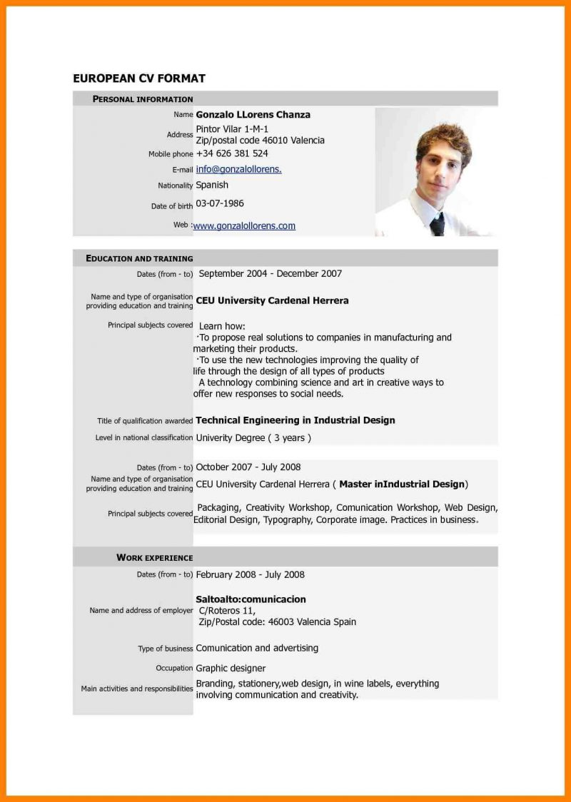 Resume Examples Format Doc